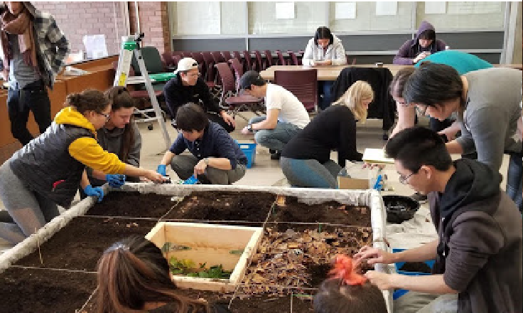 Archaeology Class Dig (1)