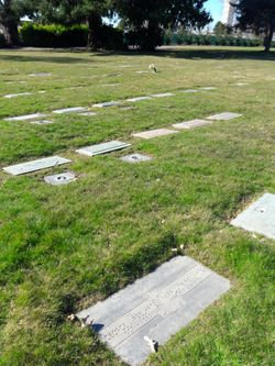 Image of flat headstones at Bonney Watson Cemetery
