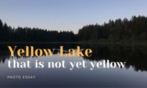 Yellow Lake, Klahanie