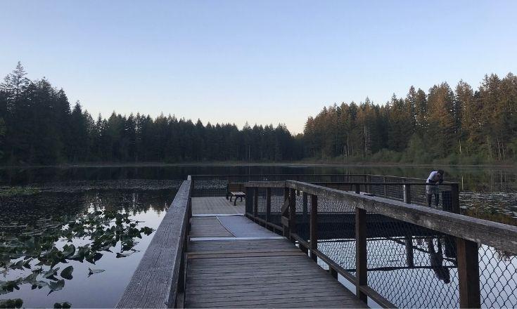 Yellow Lake Dock