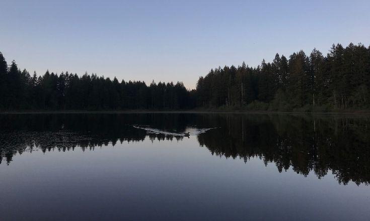 Yellow Lake symmetric reflection